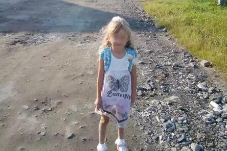 Волонтеры нашли пятилетнюю Зарину Авгонову живой в Нижегородской области