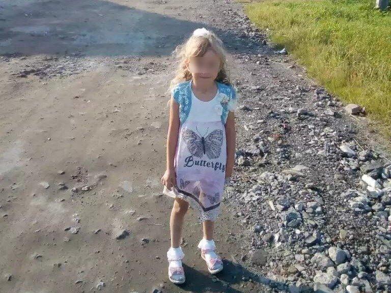 Волонтеры нашли пятилетнюю Зарину Авгонову живой в Нижегородской области - фото 1