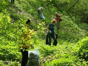 Грузовик мусора вывезли из Почаинского оврага в ходе субботника