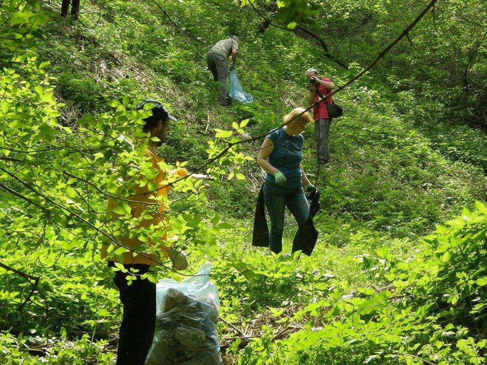 Грузовик мусора вывезли из Почаинского оврага в ходе субботника - фото 1