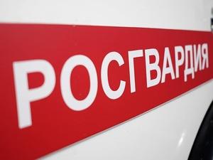 В Нижнем Новгороде пассажир напал на таксиста с пистолетом