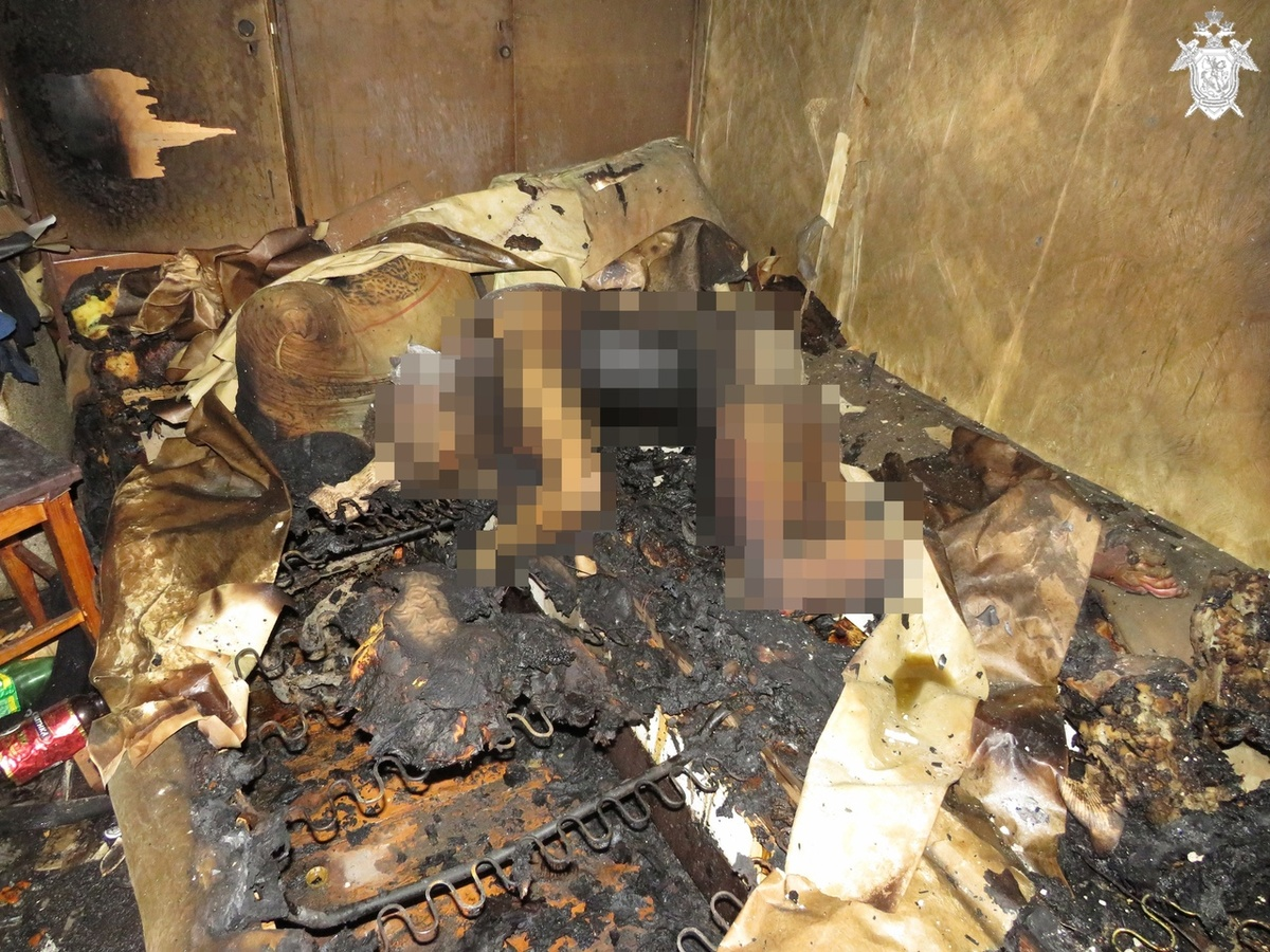 СК занялся расследованием гибели мужчины на пожаре в Сормове - фото 1