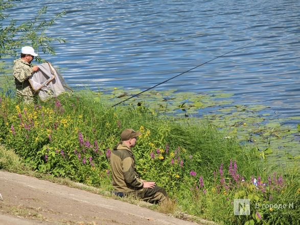 Праздник в пандемию: как Нижний Новгород отметил 799-летие - фото 21