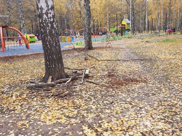 Недоблагоустройство: нижегородцы продолжают жаловаться на мусор в парке Пушкина - фото 14