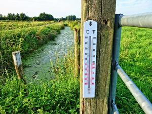 Экстренное предупреждение: на Нижний Новгород надвигается аномальная жара