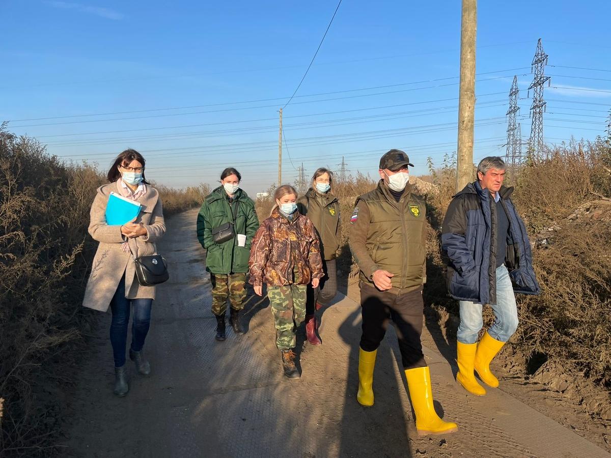 Росприроднадзор начал внеплановую проверку ликвидации Шуваловской свалки в Нижнем Новгороде - фото 1