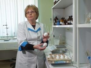 Не простое, а золотое: в Нижнем Новгороде проверили качество магазинных яиц