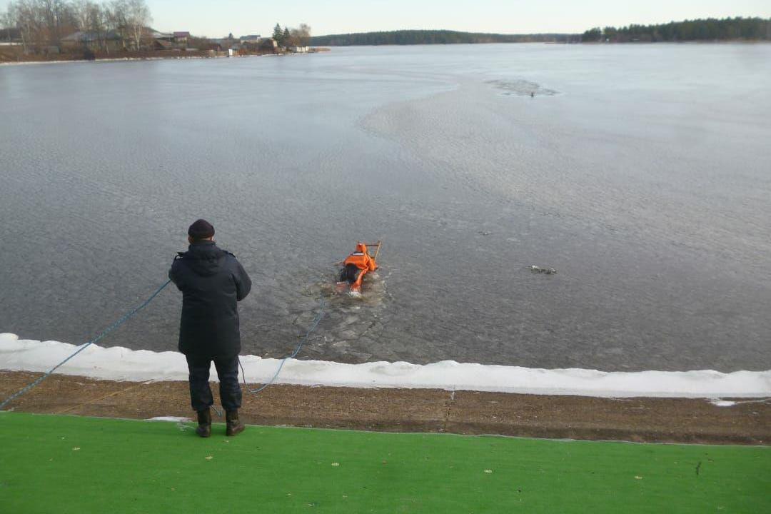 Провалившуюся под лед собаку спасли сотрудники МЧС в Выксе - фото 2