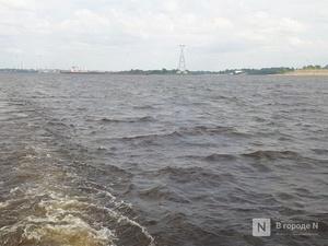 Свыше 600 млн рублей на оздоровление Волги дополнительно получит Нижегородская область