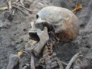На территории Нижегородского кремля обнаружено 117 детских могил