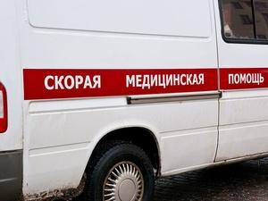 Минский грузовик задавил насмерть пешехода на трассе в Лысковском районе