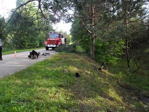 Три смертельных ДТП случилось на нижегородских дорогах 8 августа